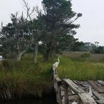 Hatteras Sands Campground