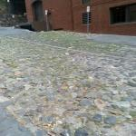 Cobblestones outside Bohemian Hotel