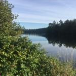 Almindsø Silkeborg