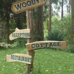 Woody signboard