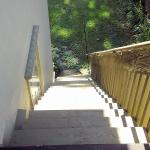 Stairs leading to the back yard
