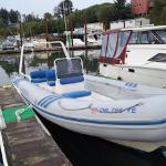 Whale's Tail Charters Foto