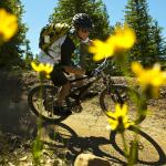 Mountain biking in Snowmass