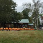 Windy Ridge Orchard & Christmass Tree Farm