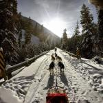 Dogsled to the Sun