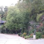 1881 Crescent Cottage Inn Foto