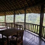 Gorilla Resort Camp Foto