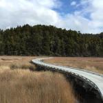 Okarito Trig Walk and Three Mile Lagoon