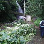 Erin Ijesha Waterfall (Olumirin Waterfalls)