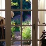 View through the front door