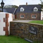 Photo of The Paddock