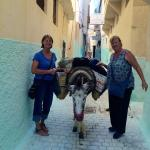 Dar Zerhoune offers valet luggage service via a local donkey!