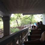 Riding under the Barton Springs Rd bridge
