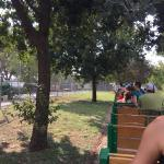 Riding through Zilker Park