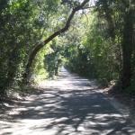 Federal Road, BHI