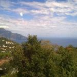 Ristorante IL Panorama  & C. Snc Foto