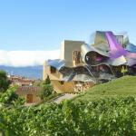 ‪Hotel Marques de Riscal a Luxury Collection Hotel‬