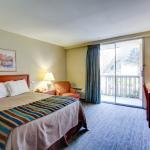 Guestroom- King bed