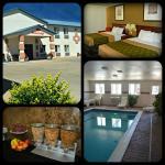 Econolodge Hotel