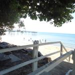 Photo of Flashpackers Hervey Bay