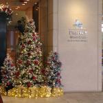 Prince Hotel Hongkong Sai Yeung Choi Street