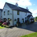 Photo of Celyn Villa Bed and Breakfast