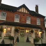 The Vine Eno Gastro Pub