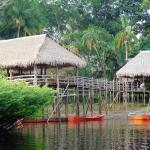 Photo de Tariri Amazon Lodge