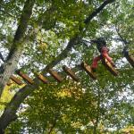 Treetop Trekking in Huntsville, Ontario