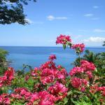 Bahia Pez Vella view