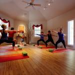 Yoga in the Tree of Life Studio