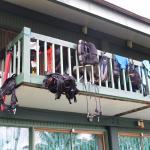 My dive buddys upstairs room balcony.