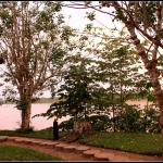 Early morning view over the Madre de Dios river from my cabana