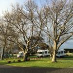 Foto de Martinborough TOP 10 Holiday Park