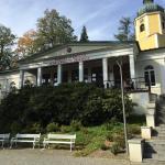 Albrechtshalle Cafe