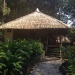 Amazon Village Jungle Lodge Photo