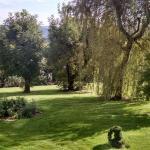 Вид из номера и прямой выход в сад