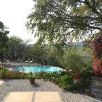 Foto de Abangane Guest Lodge