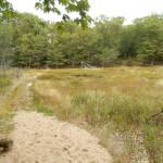 Nordhouse Dunes Wilderness Area