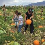 Gilcrease Nature Sanctuary & Orchards Foto