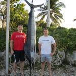 Seafari Fishing Charters - Striped Marlin