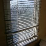 broken blinds in toilet