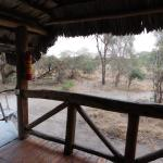 Foto de Roika Tarangire Tented Lodge