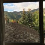 Foto di BEST WESTERN PLUS Kentwood Lodge
