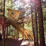 The Birches Treehouse