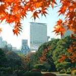 Hotel Century Southern Towre view from Shinjuku Gyoen National Garden in autumn