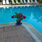 Flowees by the pool