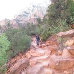 Photo of Kayenta Trail