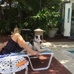 Photo de Ambrosia Key West Tropical Lodging