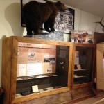 See fur trade artefacts from archaeological digs
